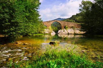 Mountain river with medieval stone bridge