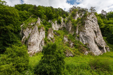 Rock formations in the greenery