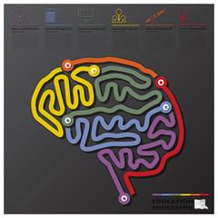 Brain Shape Education And Graduation Connection Timeline Infogra