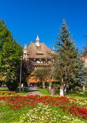 Flowerbed in Sighisoara - Romania, Transylvania
