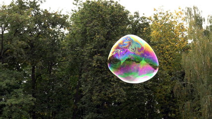 Big soap bubble flying and exploding