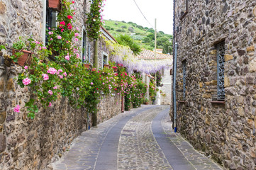 Narrow street of flowers © spritz77