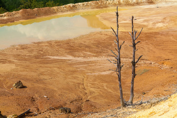 The destruction of nature