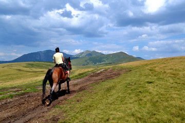 Rodna mountains in Romania - horse with man