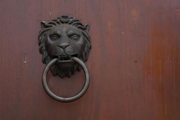 lion door wood