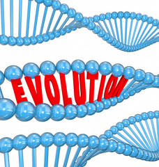 Evolution Word Letters DNA Strand Family Ancestors Genes