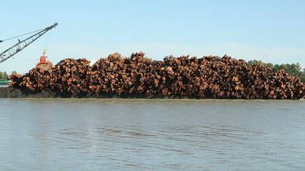 Fraser River Log Barge Close Up