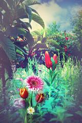 Tropical garden in the summer