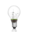 Electric light bulb and  green energy