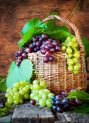 Green and Red Grapes with Leaves