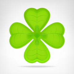 green cloverleaf isolated on white