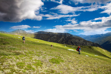 Trekkers hiking in mountains on a bright sunny day
