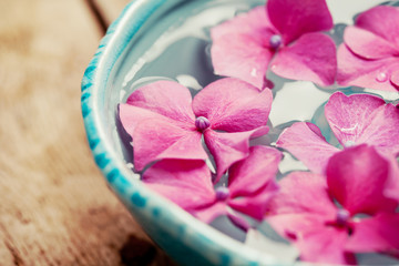 Hydrangea in bowl of water, spa concept