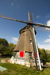 mulini a vento edam città famosa per il suo  formaggio olanda