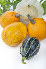 .Different types of pumpkins on a white background