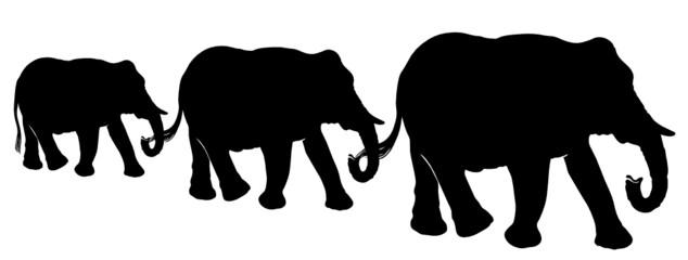 Elefanten, Silhouette