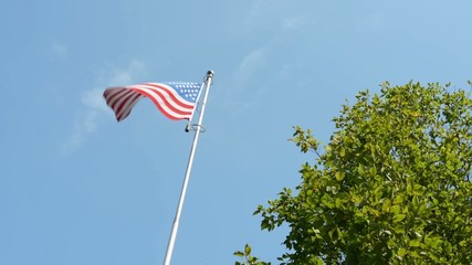 American (USA - United States of America) flag - green tree