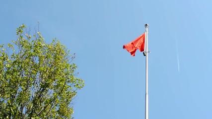 China flag - green tree - blue sky - airplane - sunny