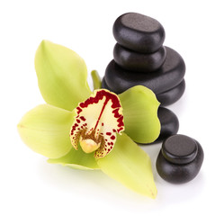 Yellow tropical orchid flower and spa stones, isolated on white