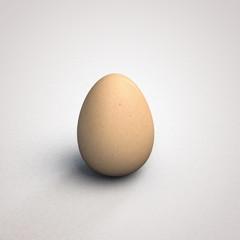 egg isolated on white