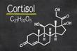 Schiefertafel mit der chemischen Formel von Cortisol - 70249300