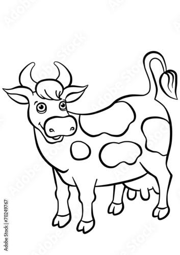 Aluminium Boerderij Kind smiling cow standing on the field