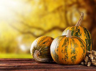 Autumn pumpkins on wood