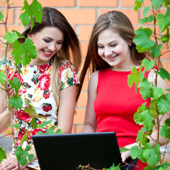 Две девушки с ноутбуком на природе летним днем