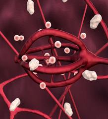 nerve cell, proyein