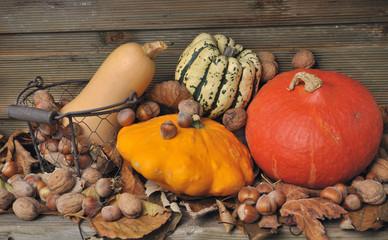 courges et fruits secs sur fond en bois