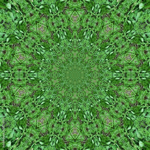 Abstract vector collection - Green