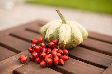 Pumpkin with rosehips