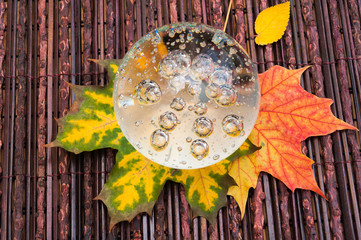 Autumn composition with maple leafs and glass sphere