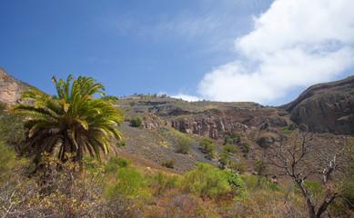 Gran Canaria, Caldera de Bandama, abandoned farm