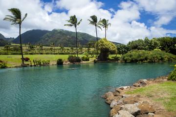 Hawaiian Lake