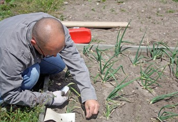 man sowing seeds in the garden
