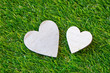 Obrazy na płótnie, fototapety, zdjęcia, fotoobrazy drukowane : Duo of hearts on green grass