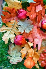 Herbstlaub auf Boden mit kräftigen Farben / Herbsthintergrund