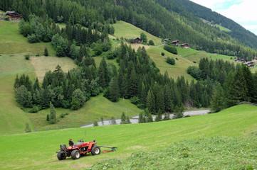 Heuernte in Südtirol