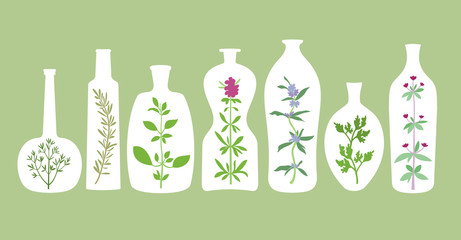 Aromatic Plants In Bottles Silhouettes