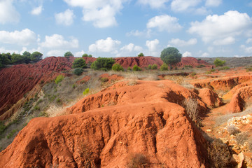 bauxite mine with red ground