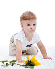 Baby boy and the sunflower