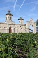 château du vignoble bordelais