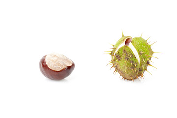 Chestnuts isolated on white