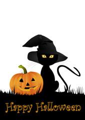 Katze und Kürbis zu Halloween
