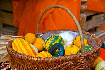 Basket with pumpkins and gourds in fall.