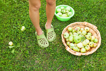 cute photo of legs and apples