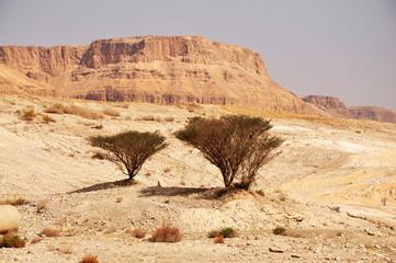 south israel