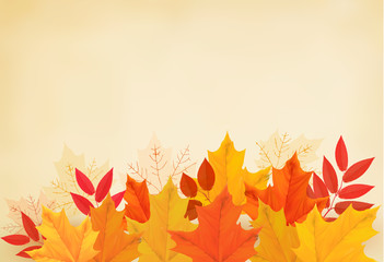 Abstract autumn background with colorful leaves. Vector illustra