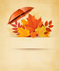 Autumn background with autumn leaves and red umbrella. Vector.
